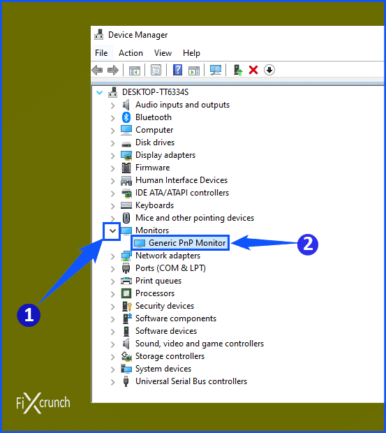 Device Manager Monitor Section